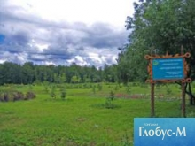 Незаконная застройка Бицевского леса